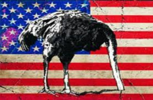 ostrich-head-in-sand-american-flag-600x394